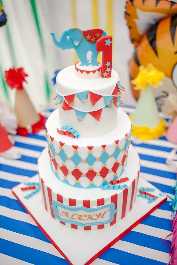 Alekh's 1st Birthday (6 of 209)